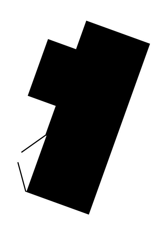 ppag_tmw_outline